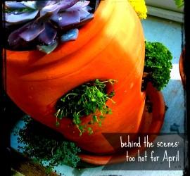 bts too hot april